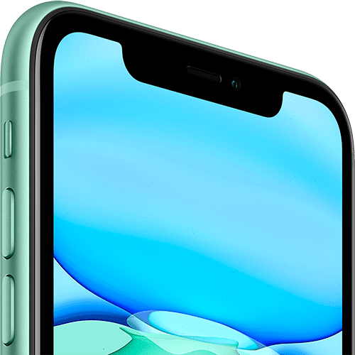 Apple iPhone 11 128Gb Green (MWM62RU/A)